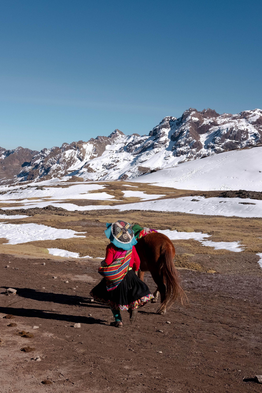 Horse on Rainbow Mountain, Peru.