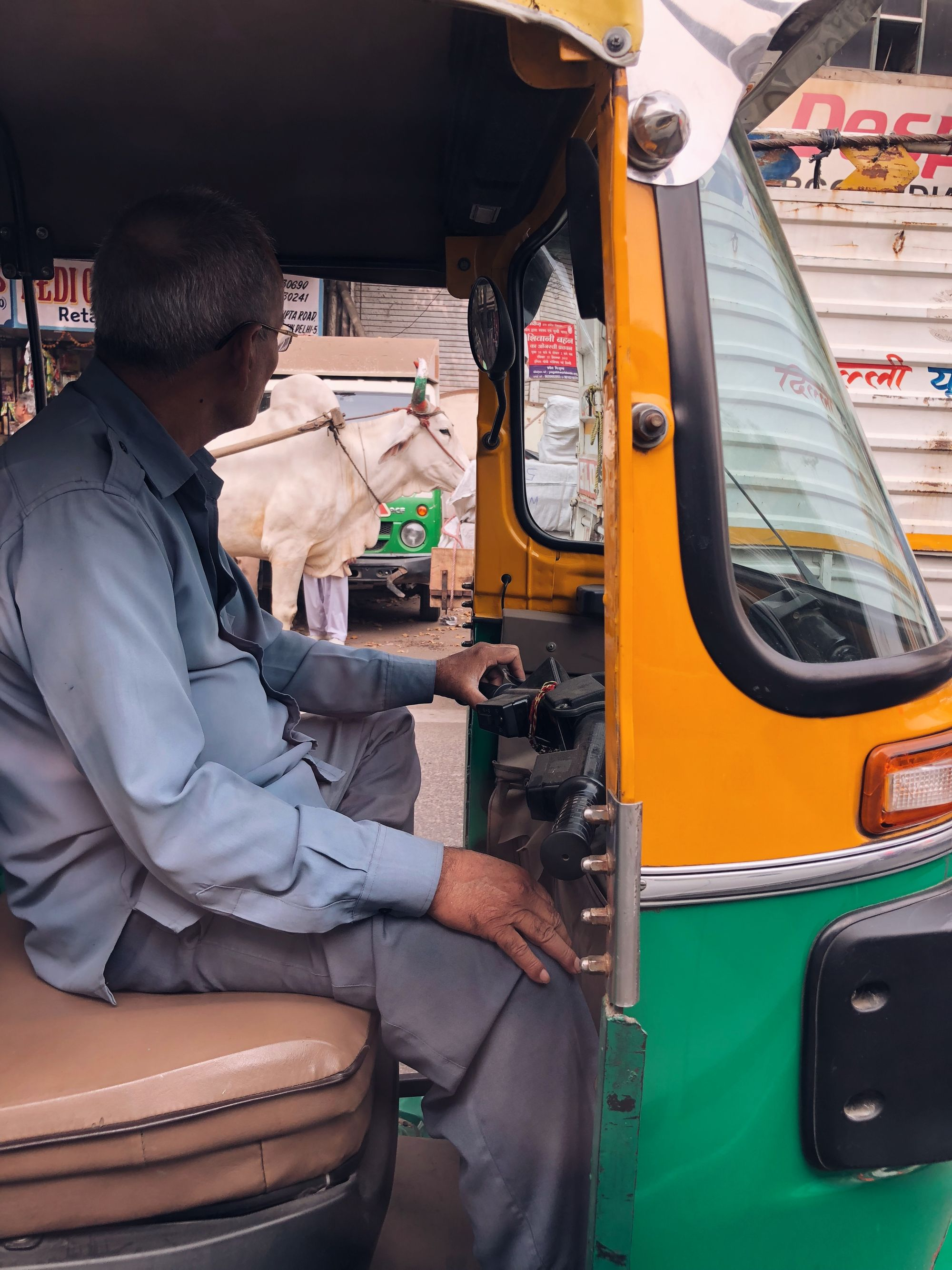Rickshaw driver and cow in Delhi, India.